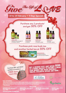 origo_Valentines-Day-Store-Poster
